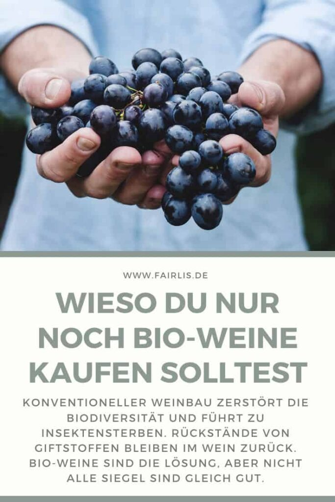 Wieso du nur noch Bio-Weine kaufen solltest