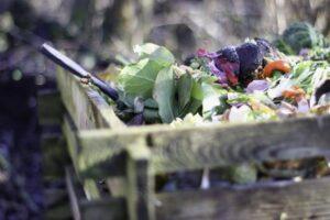 Biomüll im Kompost