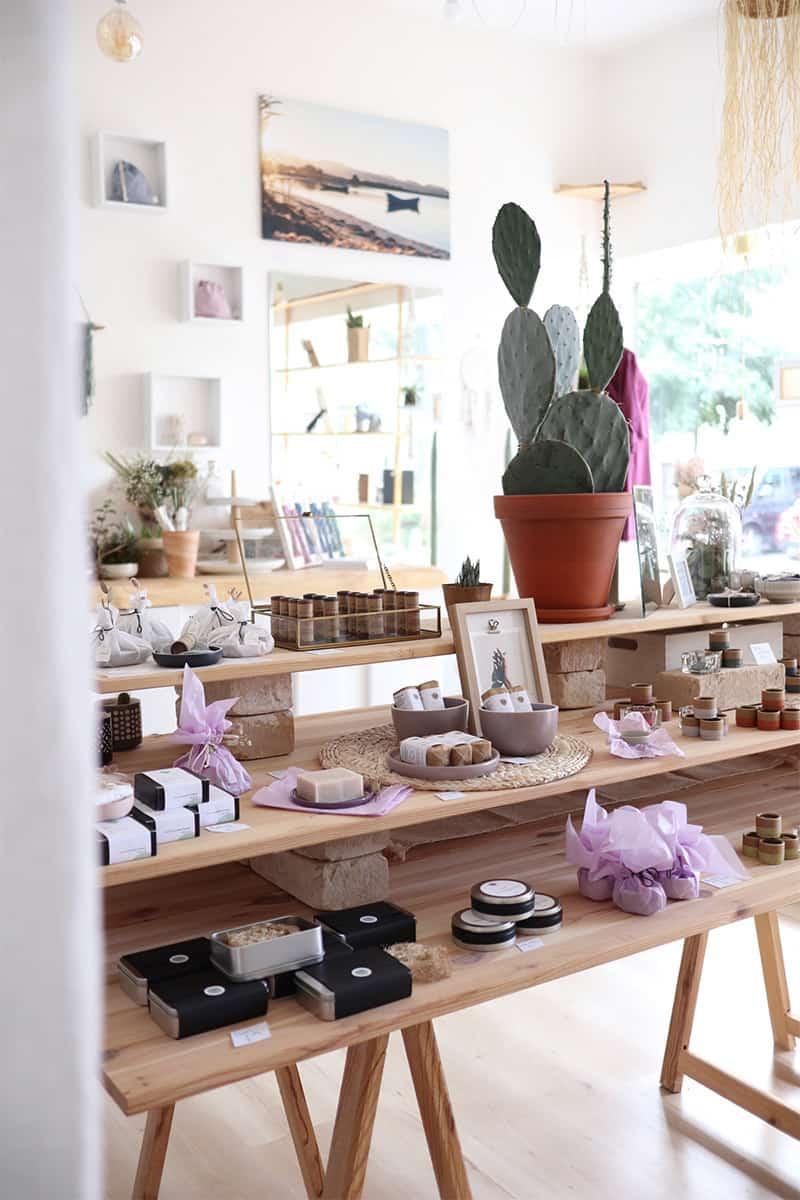 Plastikfreie Seifen Lippenpflegeprodukte Kaktus auf Holztisch