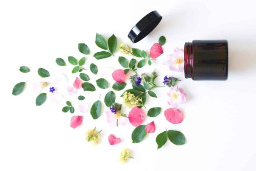 Kosmetiktiegel seitlich liegend mit Blüten und Blättern