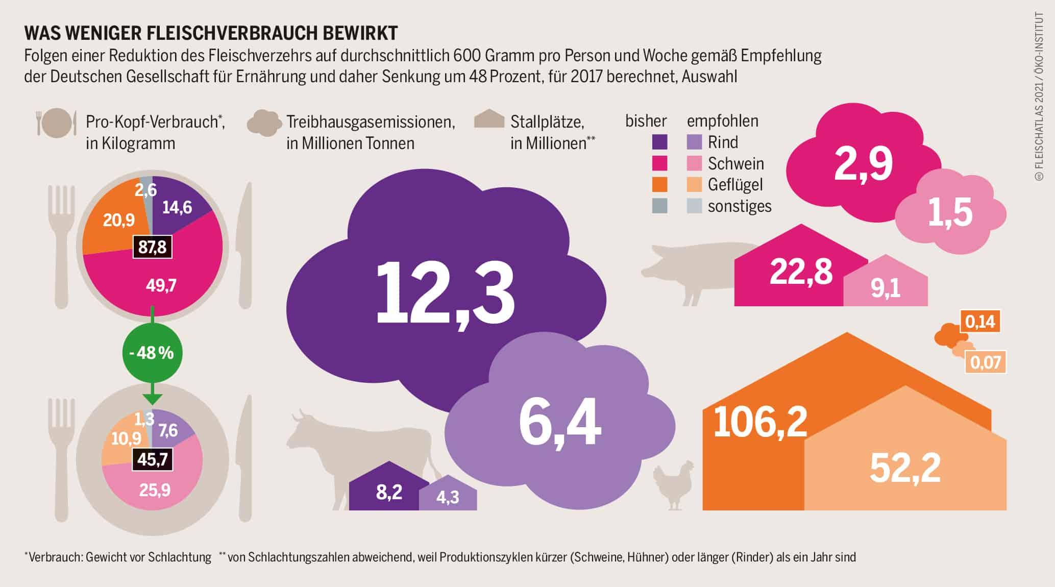 Was weniger Fleischverbrauch bewirkt Grafik: Fleischatlas 2021 | Bartz/Stockmar CC-BY-4.0