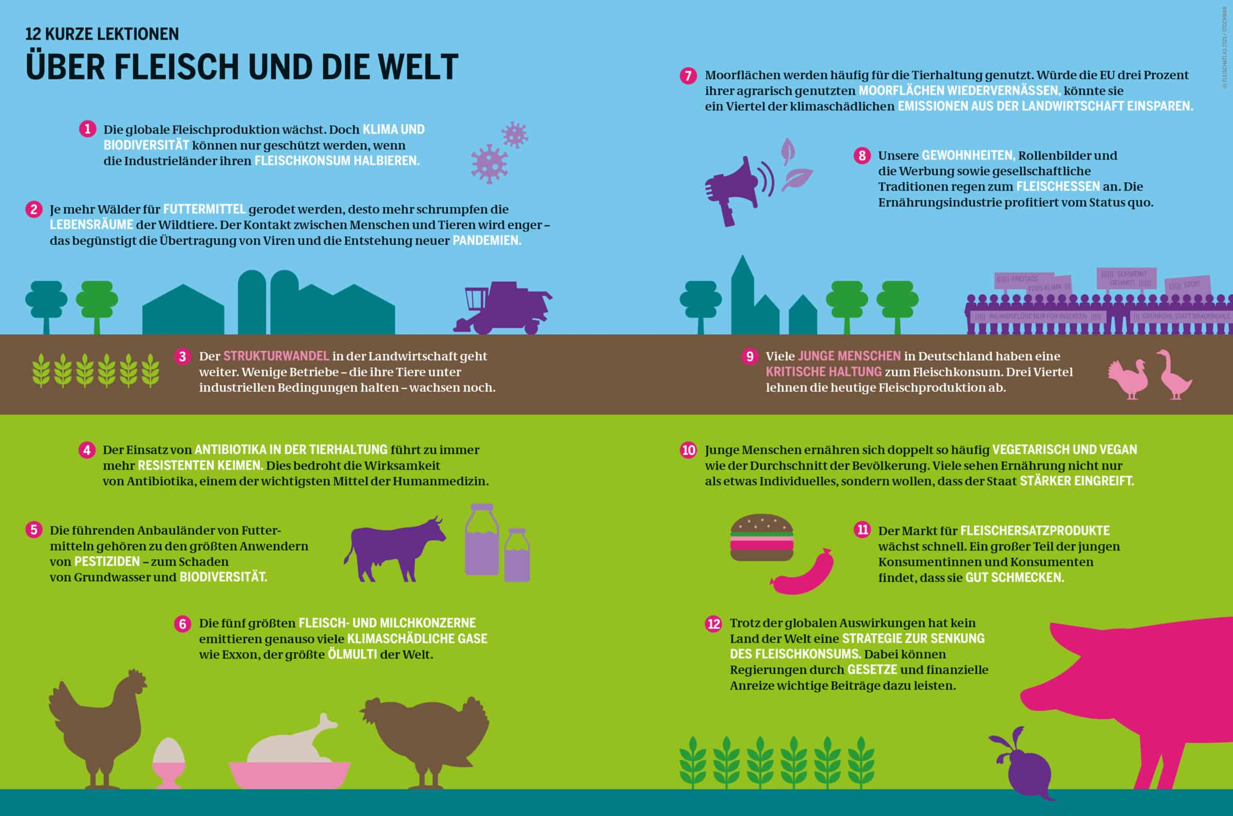 12 kurze Lektionen über Fleisch und die Welt Grafik: Fleischatlas 2021 | Bartz/Stockmar CC-BY-4.0