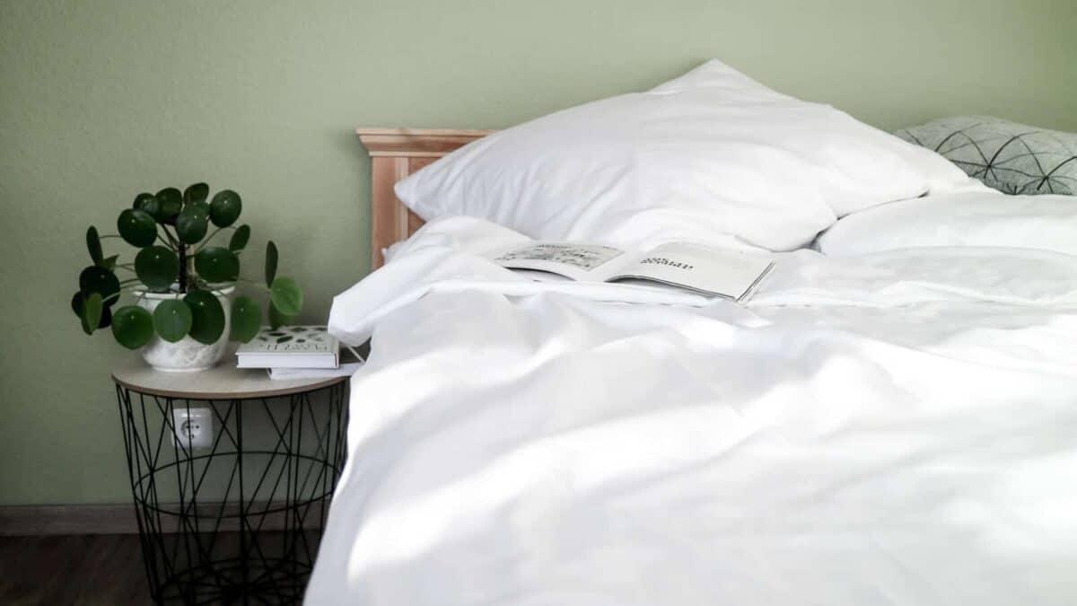seit1832 nachhaltige Bettwäsche weiß neben Nachttisch mit Büchern und Pilea